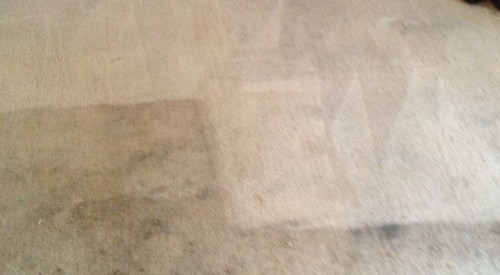 carpet cleaning services in Bolton
