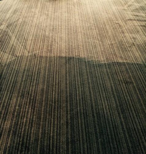 Bury Carpet Cleaners