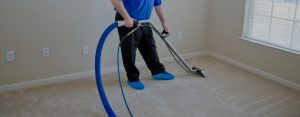 Specialist carpet cleaning services